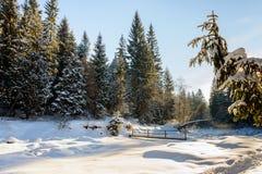 Il fiume della montagna Paesaggio di inverno Fotografia Stock