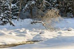 Il fiume della montagna Paesaggio di inverno Immagine Stock Libera da Diritti