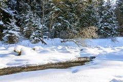 Il fiume della montagna Paesaggio di inverno Fotografia Stock Libera da Diritti