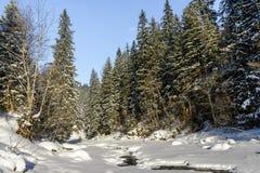 Il fiume della montagna Paesaggio di inverno Fotografie Stock Libere da Diritti