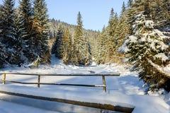 Il fiume della montagna Paesaggio di inverno Immagini Stock