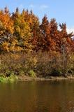Il fiume di autunno Fotografia Stock Libera da Diritti