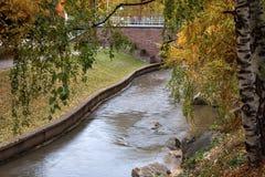 Il fiume di Belakurikh nella caduta Fotografia Stock Libera da Diritti