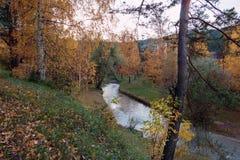 Il fiume di Belakurikh nella caduta Fotografia Stock