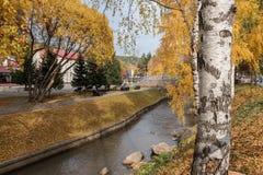 Il fiume di Belakurikh nella caduta Immagine Stock