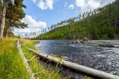 Il fiume di Firehole attraversa il parco nazionale di Yellowstone Immagine Stock Libera da Diritti