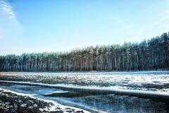 Il fiume 5 di inverno Fotografia Stock Libera da Diritti