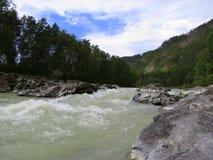 Il fiume di Katun Fotografia Stock