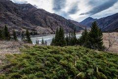 Il fiume di Katun fra le montagne Immagine Stock Libera da Diritti