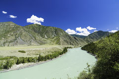 Il fiume di Katun fra le montagne di Altai Fotografie Stock