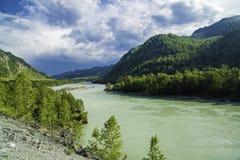 Il fiume di Katun fra le montagne di Altai Immagini Stock Libere da Diritti