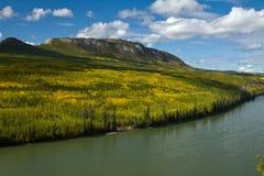 Il fiume di Liard attraversa le colline pedemontana immerse nei colori di caduta Immagini Stock Libere da Diritti