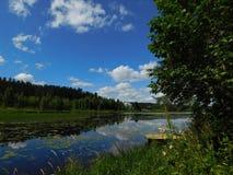 Il fiume di Oredezh Immagine Stock Libera da Diritti