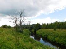 Il fiume di Oredezh Immagini Stock Libere da Diritti