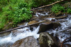 Il fiume di Prut Fotografia Stock Libera da Diritti