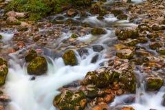 Il fiume di Sava Bohinjska nel parco nazionale di Triglav, Slovenia Fotografia Stock Libera da Diritti
