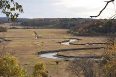 Il fiume di serpente fotografie stock libere da diritti