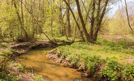 Il fiume di Yazvenka che attraversa il territorio della proprietà di Tsaritsyno mosca Federazione Russa immagine stock