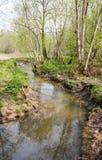 Il fiume di Yazvenka che attraversa il territorio della proprietà di Tsaritsyno mosca Federazione Russa immagini stock libere da diritti