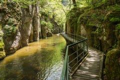 Il fiume e Eco di Devinska trascinano Strouilitsa-Lukata, Bulgaria Fotografie Stock