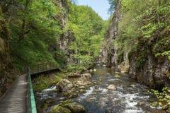 Il fiume e Eco di Devinska trascinano Strouilitsa-Lukata, Bulgaria Fotografia Stock