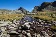 Il fiume e Orlovets della montagna alzano, montagna di Rila Fotografie Stock Libere da Diritti