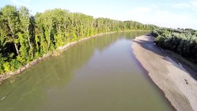 Il fiume entra nella foresta 5 stock footage