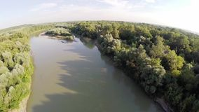 Il fiume entra nella foresta 11 stock footage