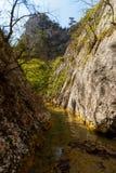 Il fiume esegue la parete di canyon stretta alla parete di canyon Gola stupefacente con le alte pareti delle pareti Fotografia Stock Libera da Diritti