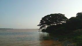 Il fiume Godavari fotografia stock