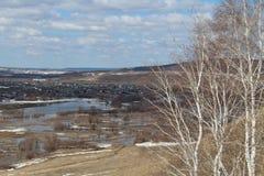 Il fiume ha sommerso le banche vicino al villaggio Fotografia Stock