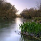 Il fiume Itchen in primavera a Ovington, Hampshire, Regno Unito fotografie stock libere da diritti