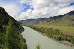 Il fiume Katun. Montagna Altai, Siberia Fotografie Stock