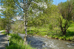 Il fiume Kuyum nelle montagne di Altai Fotografie Stock