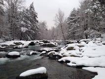 Il fiume Little Pigeon, neve fotografia stock libera da diritti