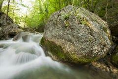 Il fiume in montagne nella sorgente Immagine Stock Libera da Diritti