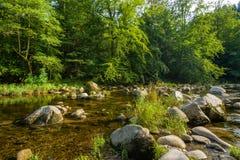 Il fiume Murg nella valle di Murg vicino a Forbach Fotografia Stock Libera da Diritti
