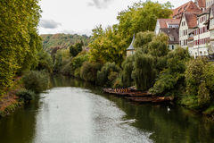 Il fiume Neckar Fotografia Stock Libera da Diritti