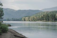 Il fiume nel altai montagnoso fra le montagne Immagini Stock Libere da Diritti
