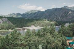 Il fiume nel altai montagnoso fra le montagne Fotografie Stock