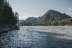Il fiume nel altai montagnoso fra le montagne Immagine Stock Libera da Diritti