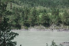 Il fiume nel altai montagnoso fra le montagne Immagini Stock