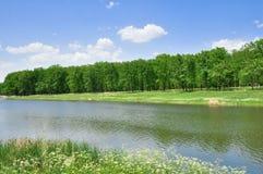 Il fiume nel campo Immagini Stock Libere da Diritti