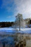 Il fiume nell'inverno Fotografie Stock Libere da Diritti