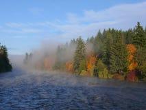 Il fiume nella caduta Fotografie Stock