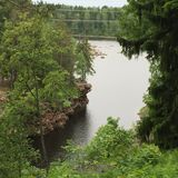 Il fiume nella foresta Fotografia Stock Libera da Diritti