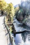 Il fiume risultante di Lashipse dal lago Ritsa Immagine Stock Libera da Diritti