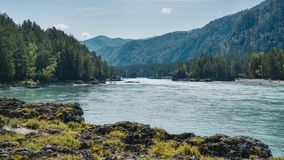 Il fiume scorre contro lo sfondo delle montagne coperte di foresta sotto il cielo blu Fotografie Stock Libere da Diritti