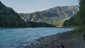 Il fiume scorre lungo il litorale pebbled contro il contesto delle montagne e delle foreste Fotografia Stock