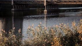 Il fiume scorre uniformemente sotto il ponte stock footage